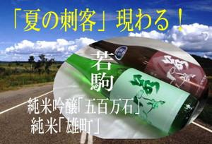 Wakakoma2012061111