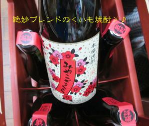 Miyakozakura20140124