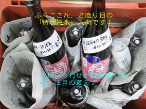 Yui2520140124omachi