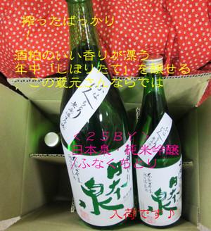 Nihonizumi20140325