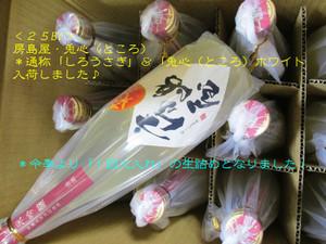 Tokoro20140625