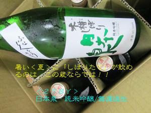 Nihonizumi20140707
