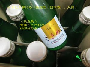 Harushikatokimeki20140821