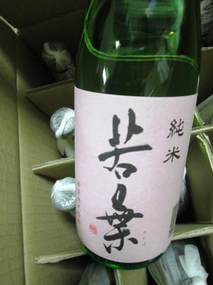 Wakabajynhi20150603