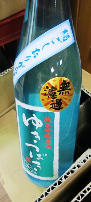 Yukitsubaki20160610