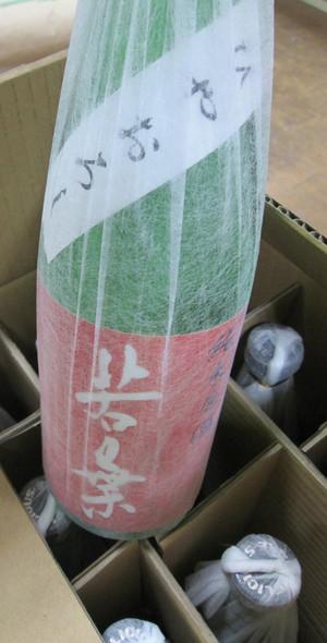 Wakaba27hiyaoroshi20160902