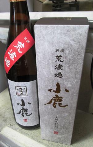 Kojika20170614